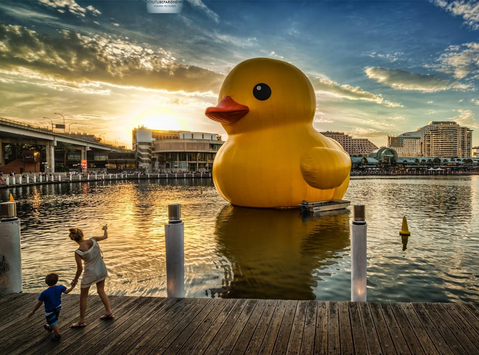 the-giant-rubber-ducky-Australia.jpg