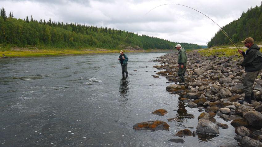 рыбалка на варзуге и умбе