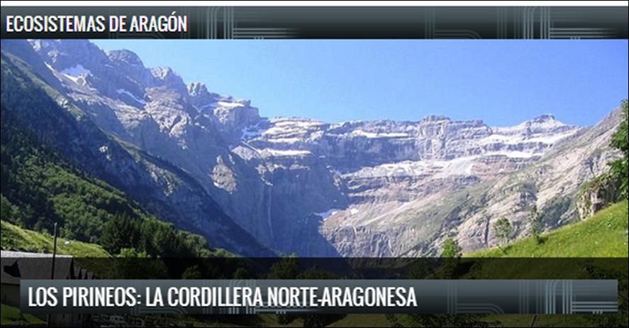 Blog Ecosistemas Aragoneses