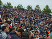 Cricket crowd picture 2010