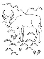 Antelope Eating Printable Kids Coloring Pages