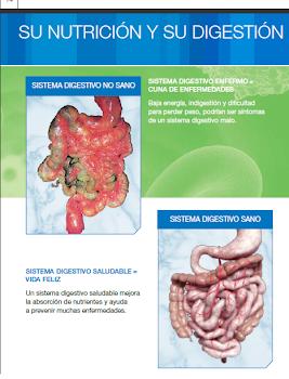 Limpieza intestinal herbalife – Medidas de cajones de