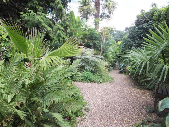 Alternative Eden Exotic Garden Will Giles Exotic Garden Norwich