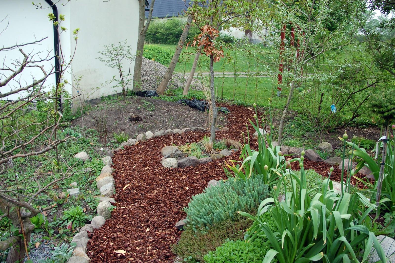 I vått och torrt trädgårdsdesign: det blidde en lund....