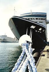 Vasele de Croaziera: Viata ascunsa de pe un vas de croaziera
