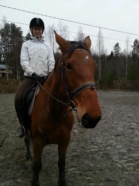 Ratsastus Kuopiossa
