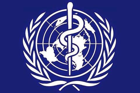 Organización Mundial de la Salud - OMS | Norma GMP B2