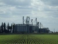 Campos y plantas procesadoras