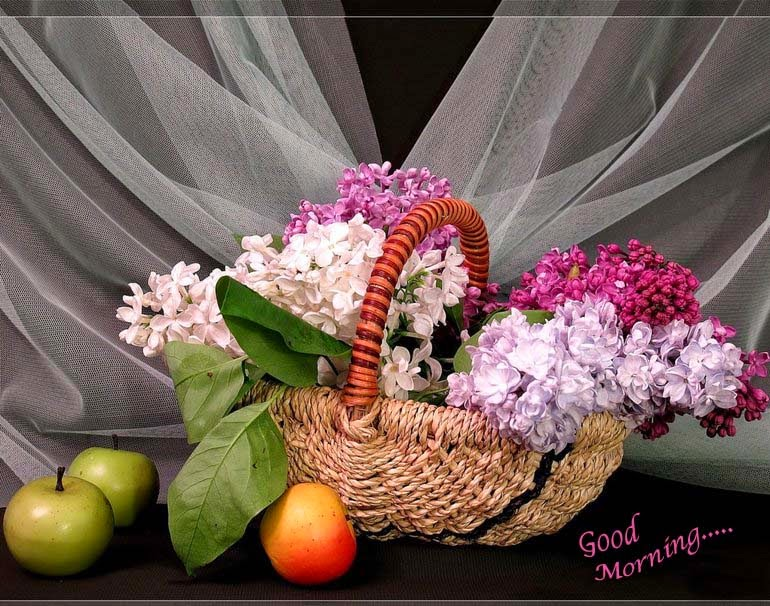 flowers-and-fruit-pic