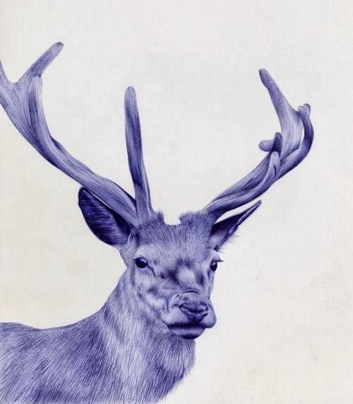 05-Dear-Sarah-Esteje-ABADIDABOU-Hyper-realistic-Ballpoint-Pen-Animals-www-designstack-co