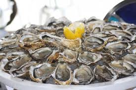 Oyster Roast Saturday Feb 4, 2012 Noon-4pm 3  images St. Francis Inn St. Augustine Bed and Breakfast