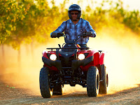 2013 Grizzly 300 Automatic Yamaha pictures 3