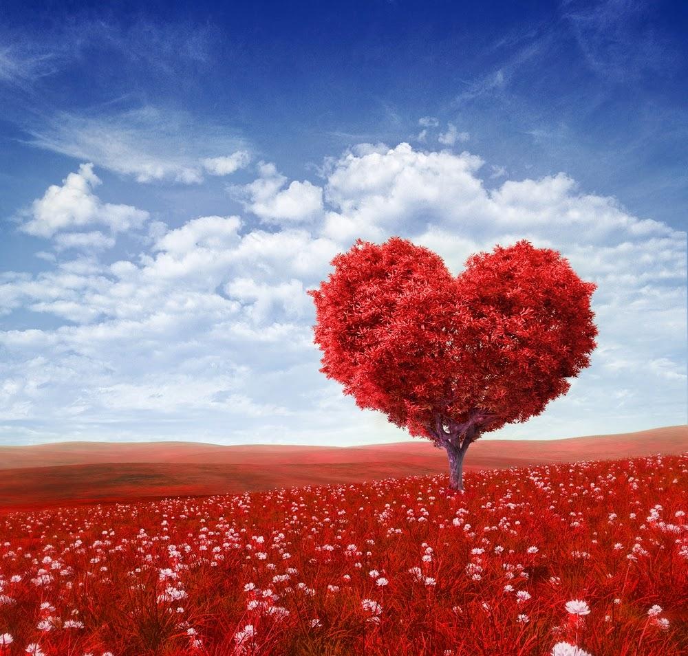 proverbes sur l'amour