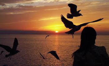 Todo era volar hacia ti amor.