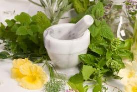 Manfaat yang terdapat dari tumbuhan pegagan