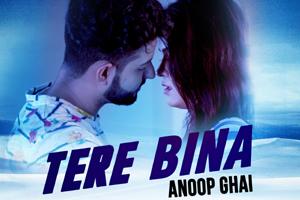 Tere Bina (Anoop Ghai)