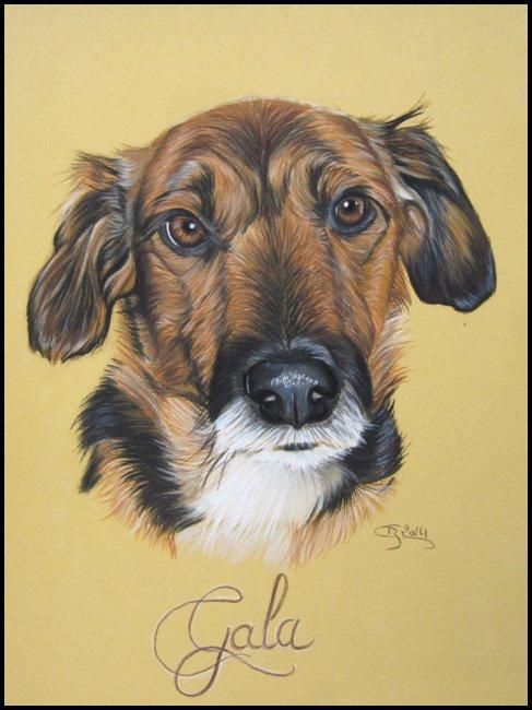 chien marron pastel