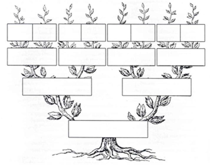 Arbol genealogico en ingl s en word imagui for Nombres de arboles en ingles
