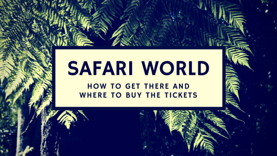 safari world bangkok guide