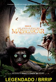 Assistir Ilha dos Lêmures – Madagascar Online