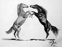 Cavalos Árabes