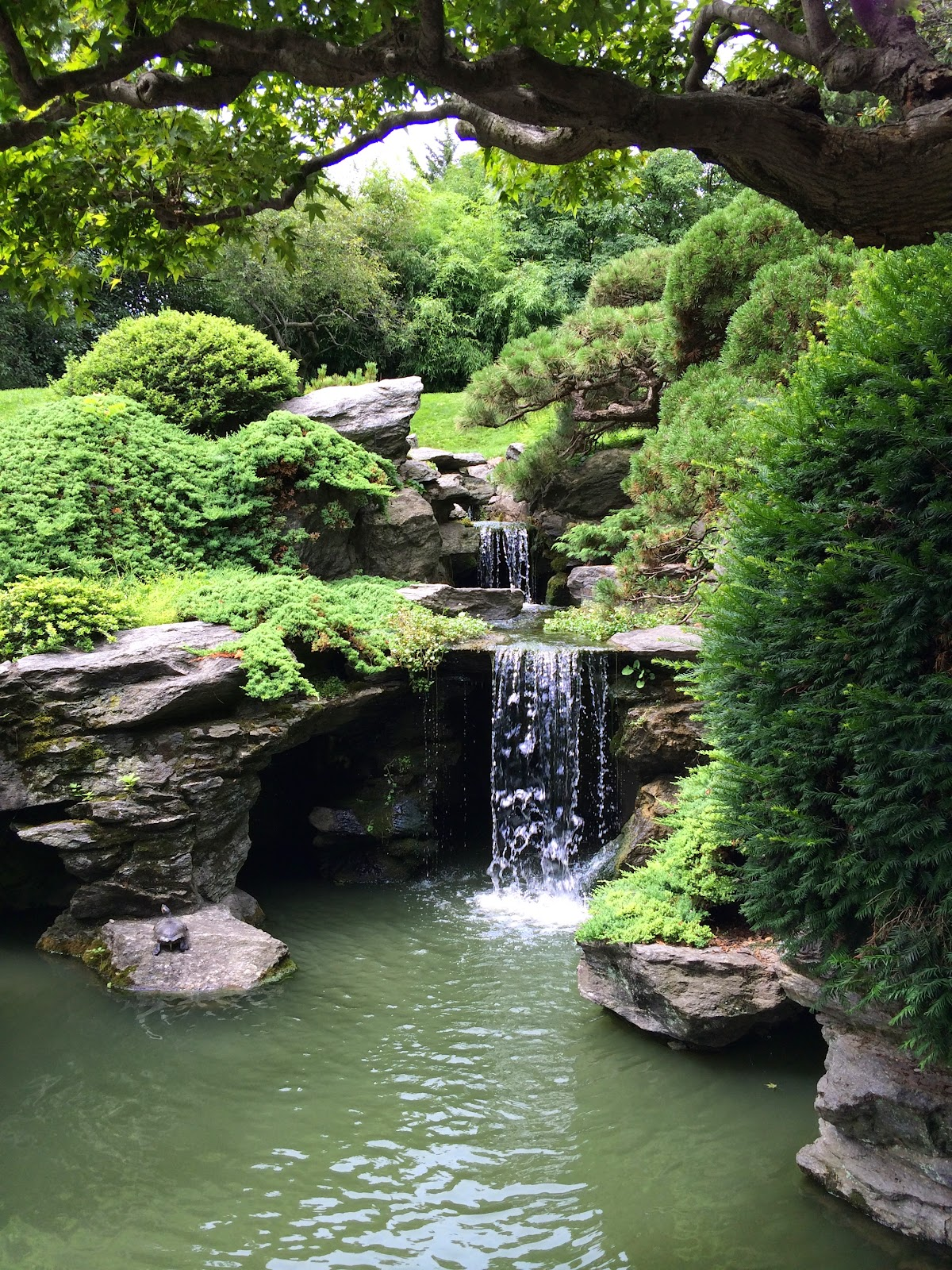 My zen garden japanese hill and pond garden for Zen garden waterfall