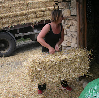 A hefting her part in the hay move