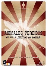 ANIMALES PERDIDOS EN LEÓN