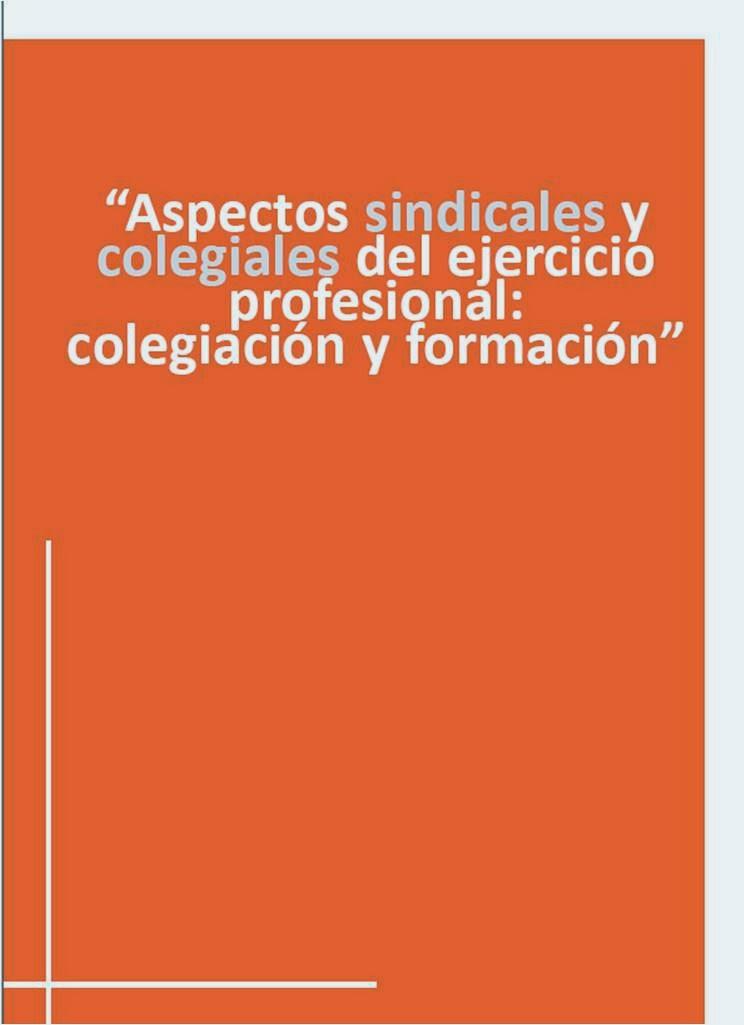 Ejercicio profesional: Aspectos sindicales y colegiales
