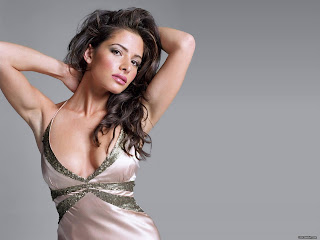 American Born Spanish Actress Sarah Shahi Hot Pictures