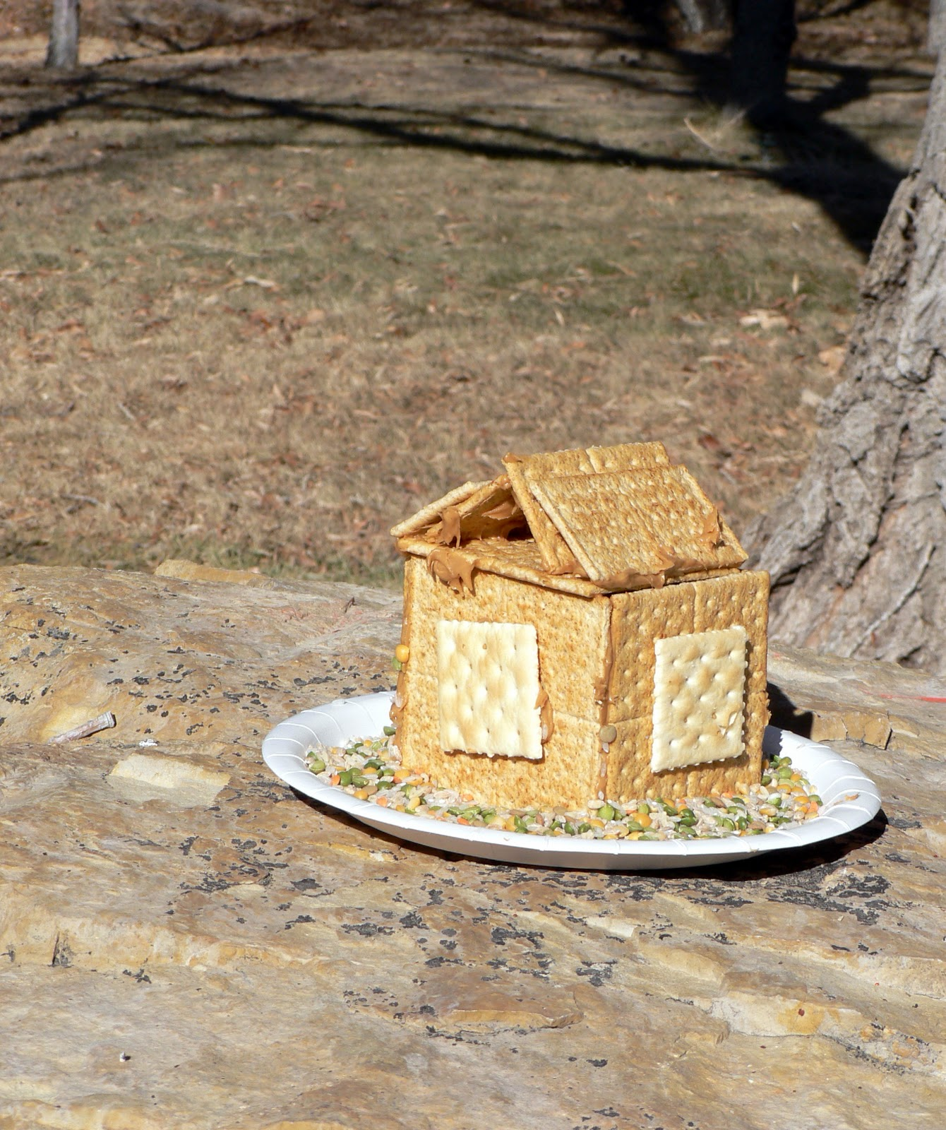 How to bird house bird feeder bless this mess for How to make homemade bird houses