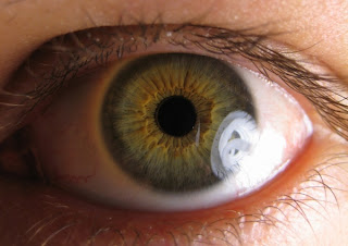 Enfermedades oculares externas