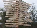 Quin camí seguir?
