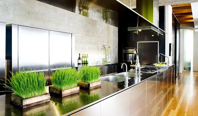 open kitchen with stainless steel cabinet fronts