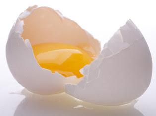 Manfaat dan khasiat telur ayam kampung
