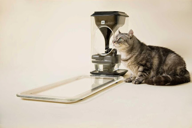 Coolest and Awesome Cat Gadgets (15) 4