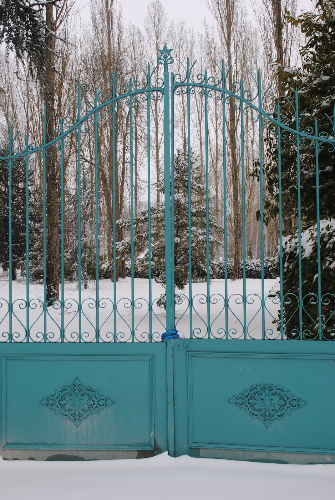 images about Teal on Pinterest Turquoise Aqua and