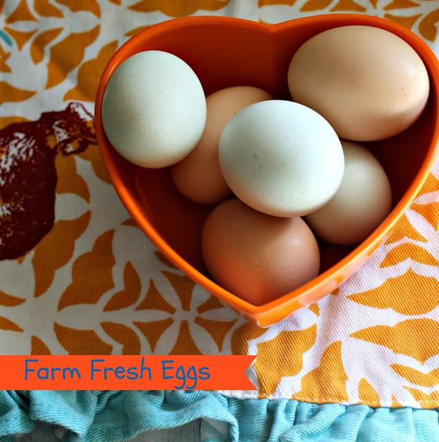 colorful eggs, egg dish towel, egg recipes