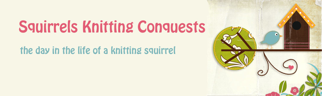 Squirrels  Knitting  Conquests