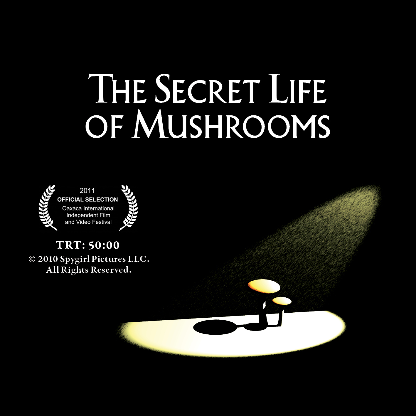 Morbid Anatomy: Psychedelic Psilocybin Mushroom Tourism and ...