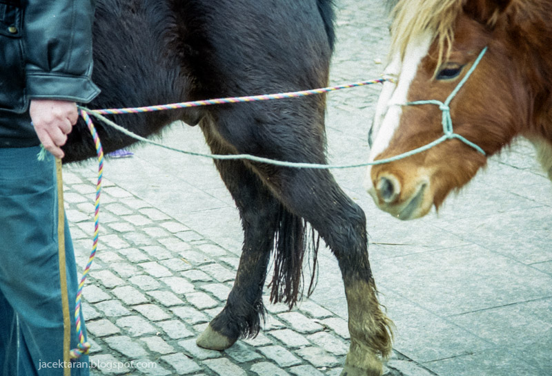 smithfield, dublin, horse market, pole kowali, fuji superia 400