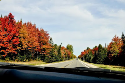 eight things you have to do this fall in Michigan
