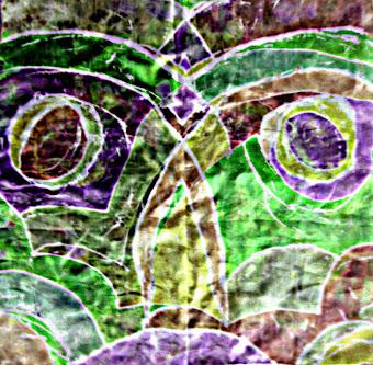 OWLS 1.4