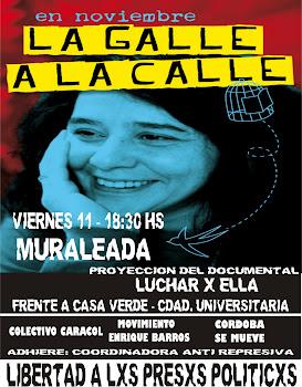 Muraleada en Córdoba -11/11