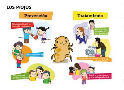 Las setas los parásitos del organismo de la persona