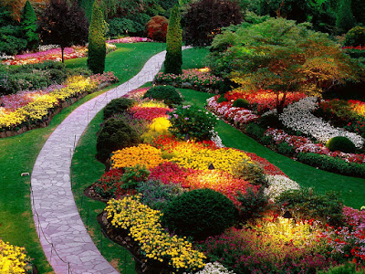 most beautiful Garden Stills