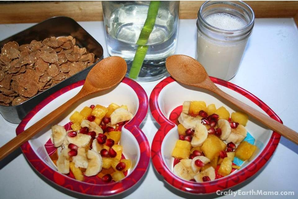 fruit bowl and heritage flakes by nature's path