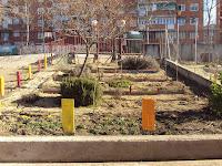 arboreto Maria Montessori