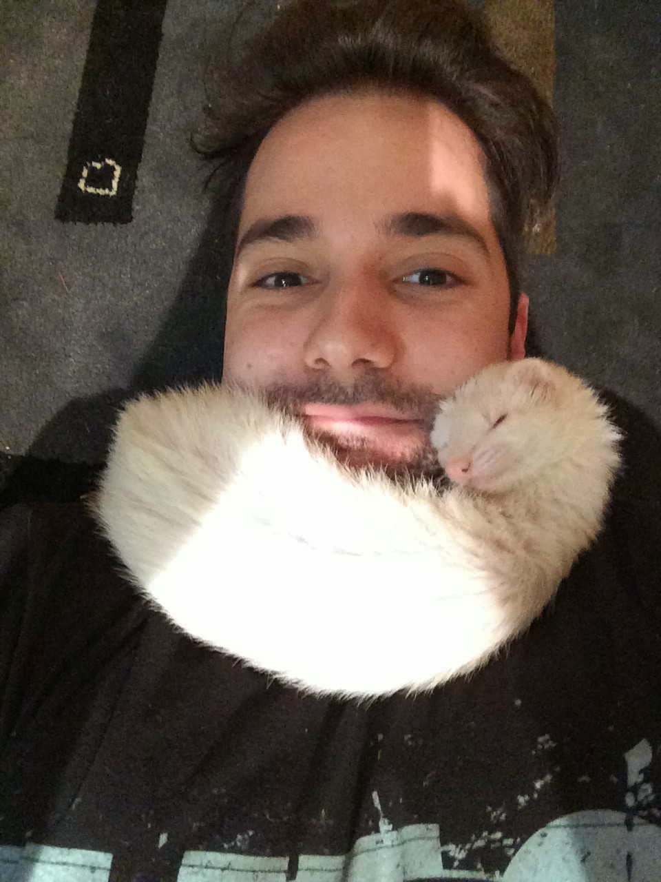 Funny animals of the week - 3 January 2014 (40 pics), ferret sleeps with a guy