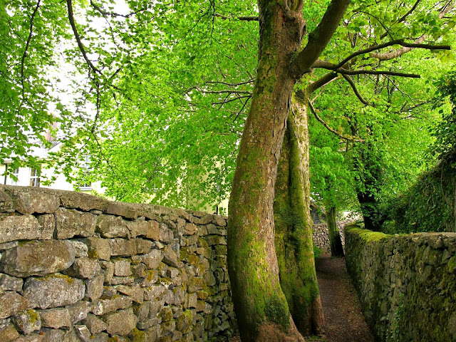 the entrance to the The Waterfall Walk in Oughterard, Galway, Ireland